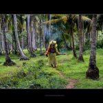 തെയ്യം കലാകാരന്, കാഞ്ഞങ്ങാട് നിന്ന്