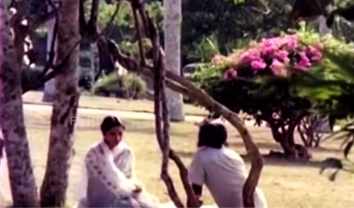 വേണു നാഗവള്ളി, ശോഭ (ഉൾക്കടൽ; 1979)